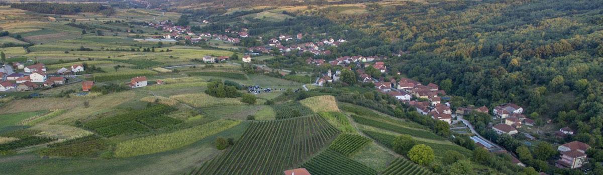 vinarija-beograd-burgundac-vino-rakija-liker-slide-03