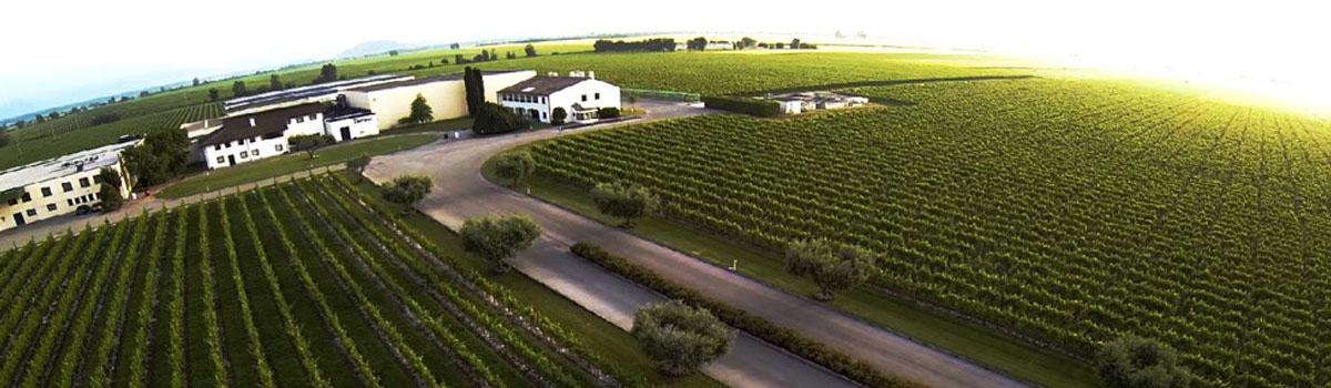 vinarija-beograd-burgundac-vino-rakija-liker-slide-04